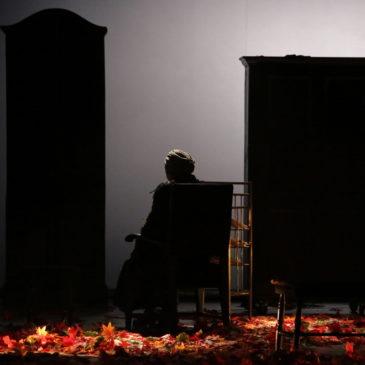 Carmen Neamțu despre Don Juan se întoarce de la război